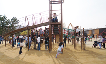 子供も大満足!天気のいい日は梅小路公園でピクニック!