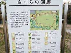 遊具に小川に広大な芝生広場に子供も大満足!梅小路公園ではイベントも頻繁に開催!